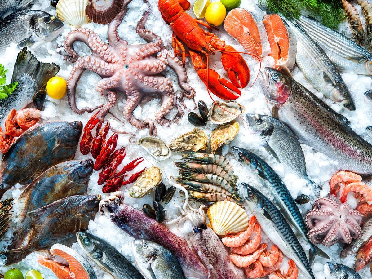 Staple food of Japan Sea food