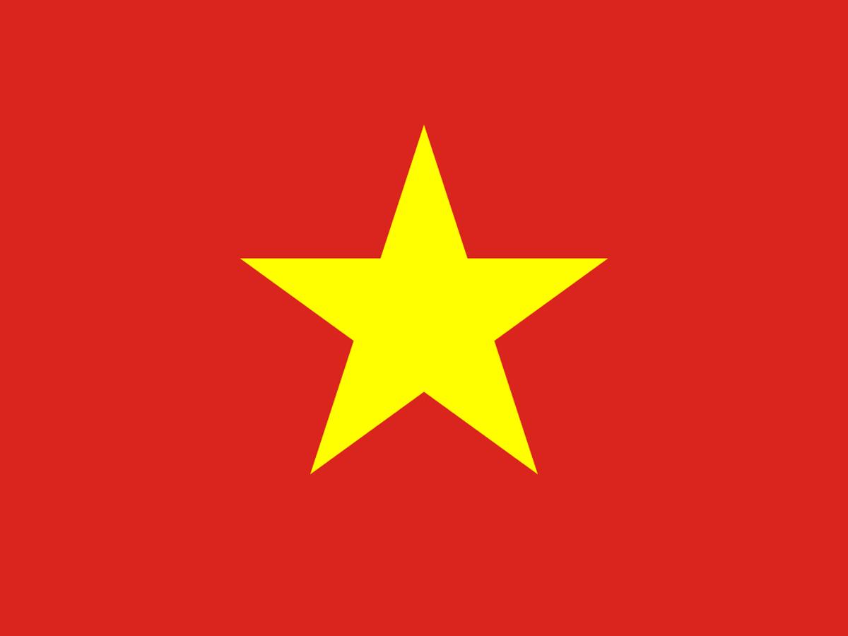 The Vietnam