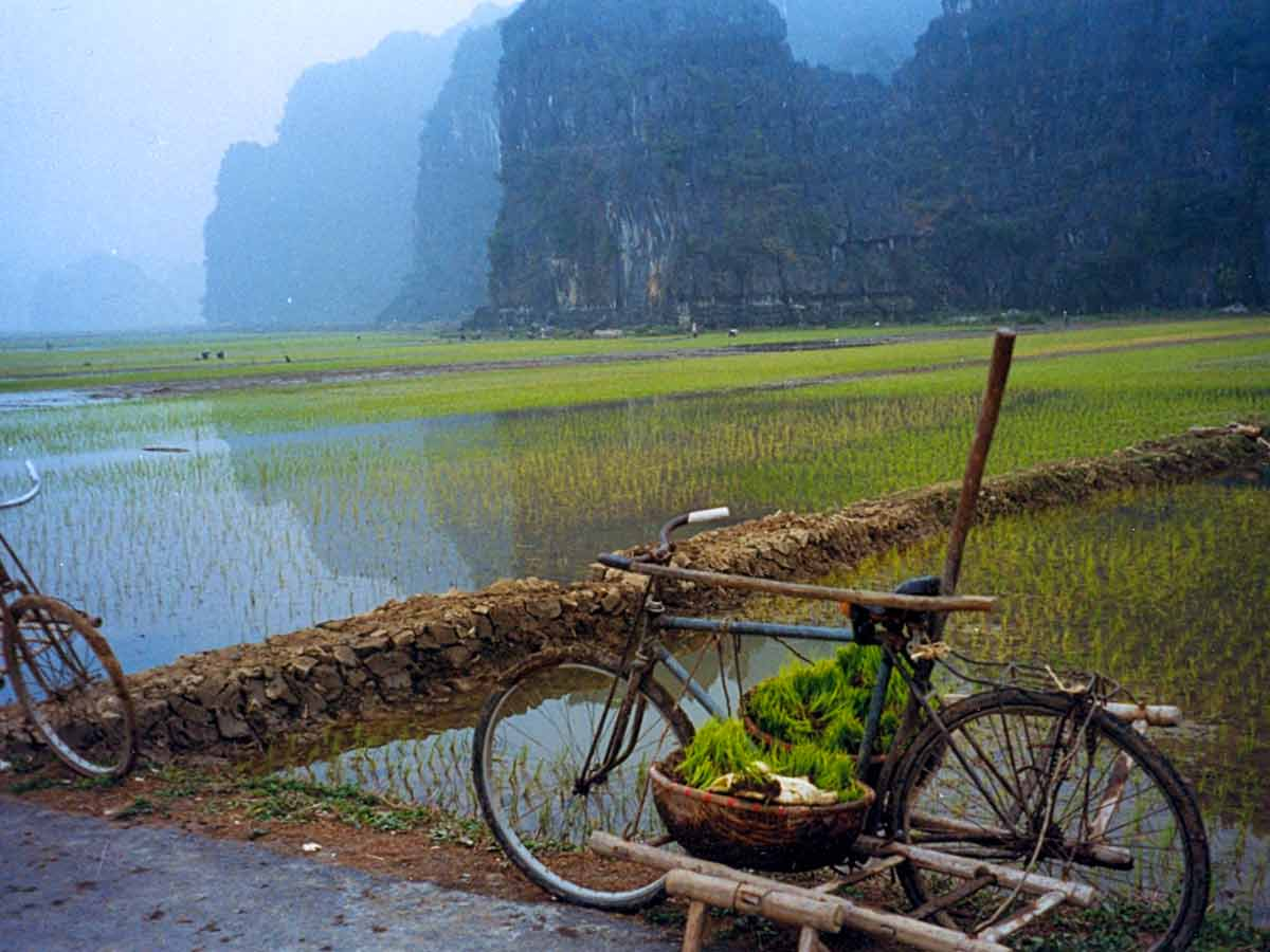 Climate issue in vietnam