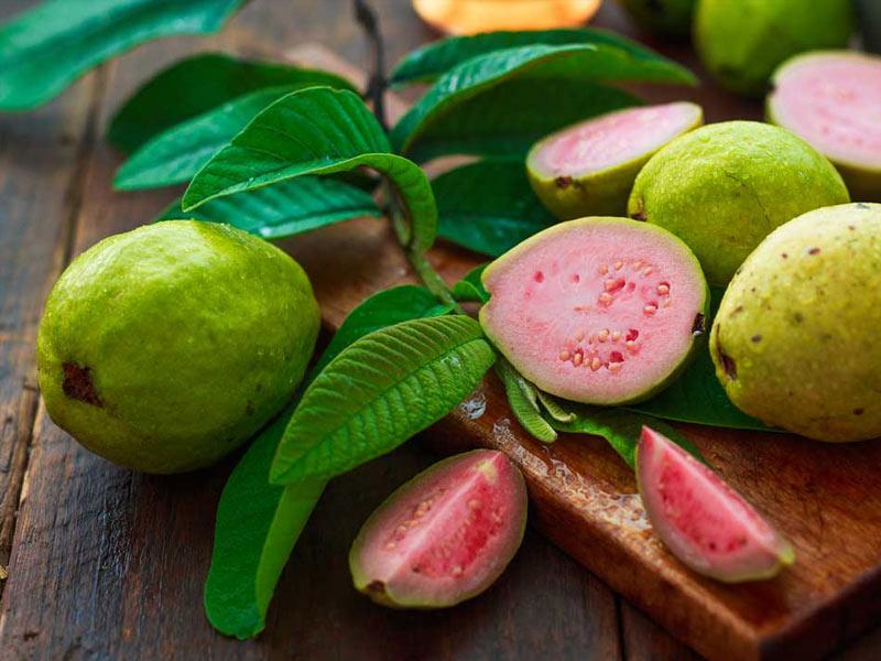 benefits of guava leaves tea
